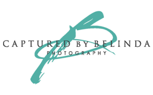 belindavendor-logos